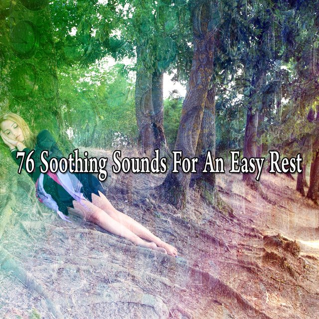 76 Soothing Sounds for an Easy Rest