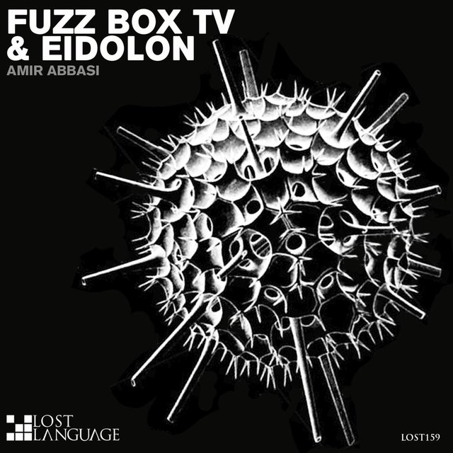 Fuzz Box TV & Eidolon