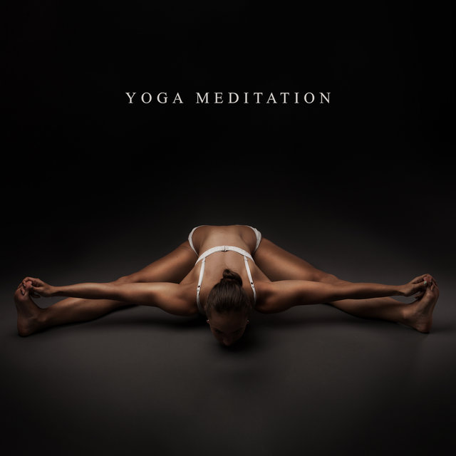 Yoga Meditation: Calm Down, Mindfulness Training, Stress Relief, Music for Body, Just Yoga