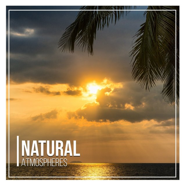 # 1 Album: Natural Atmospheres
