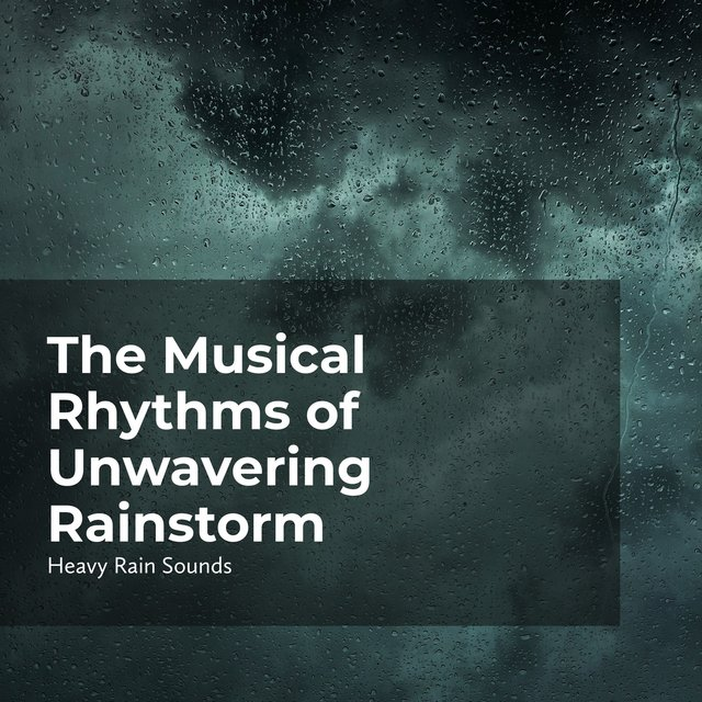 The Musical Rhythms of Unwavering Rainstorm