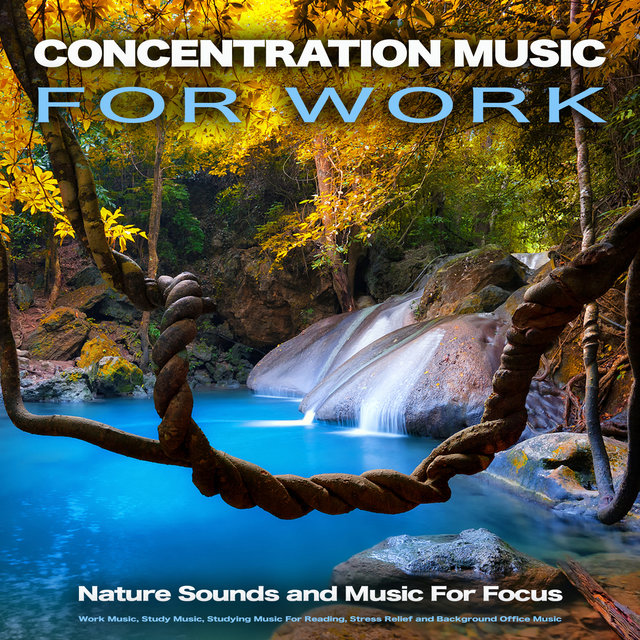 Concentration Music For Work: Nature Sounds and Music For Focus, Work Music, Study Music, Studying Music For Reading, Stress Relief and Background Office Music