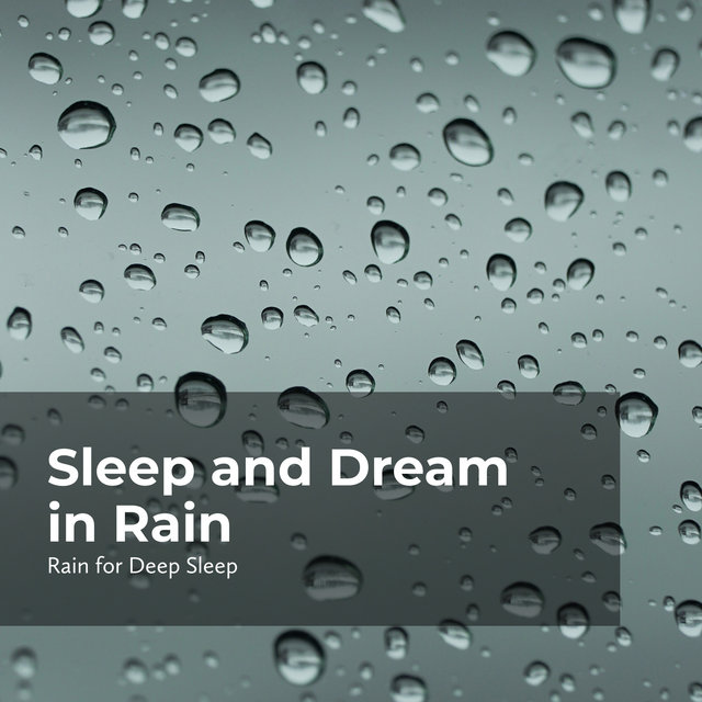 Sleep and Dream in Rain