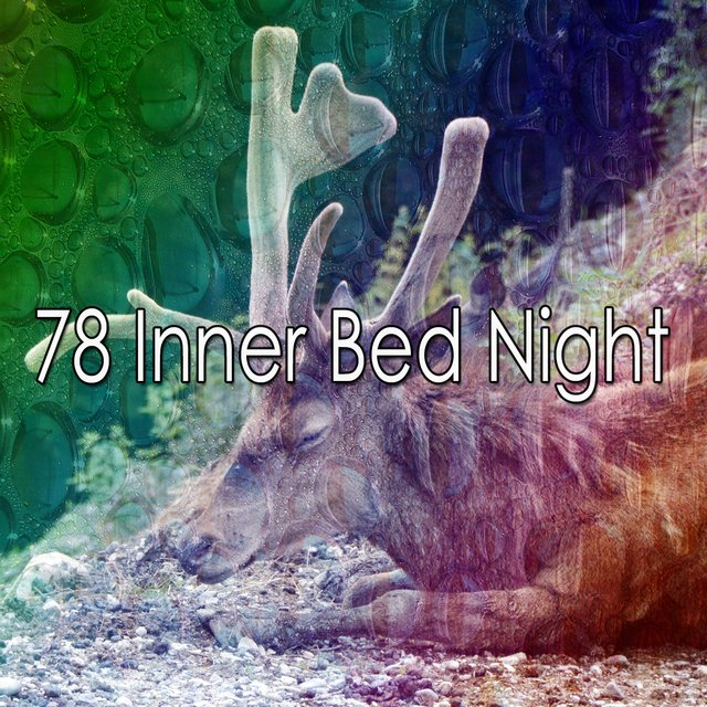 78 Inner Bed Night