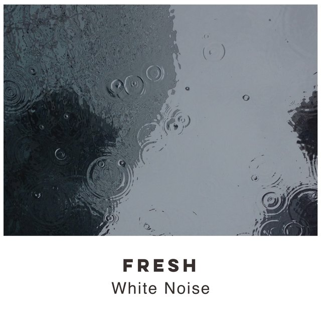 # 1 Album: Fresh White Noise