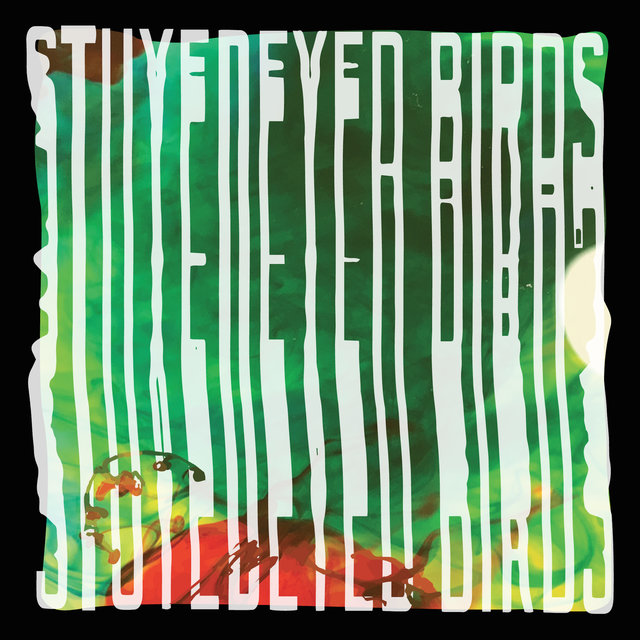 Stuyedeyed / Birds Split 7
