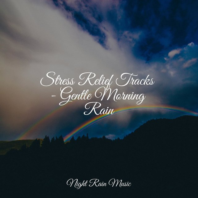 Stress Relief Tracks - Gentle Morning Rain