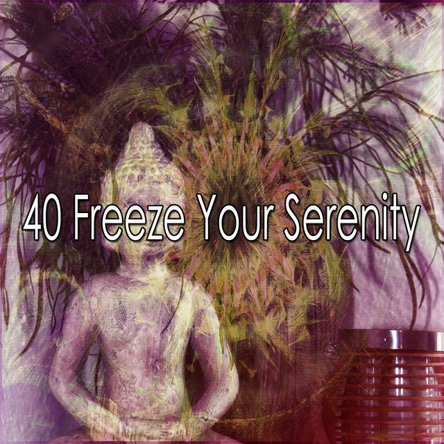 40 Freeze Your Serenity