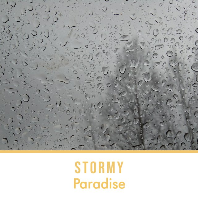 Stormy Paradise: Rain in the Woods