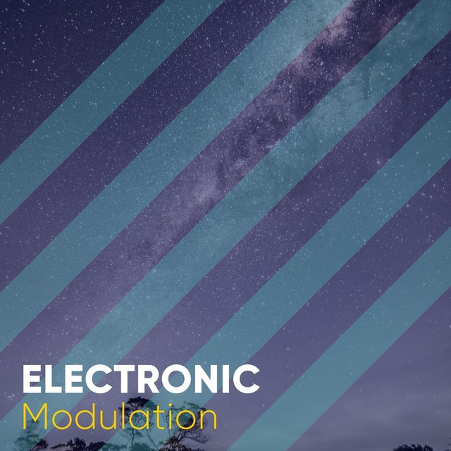 # 1 Album: Electronic Modulation