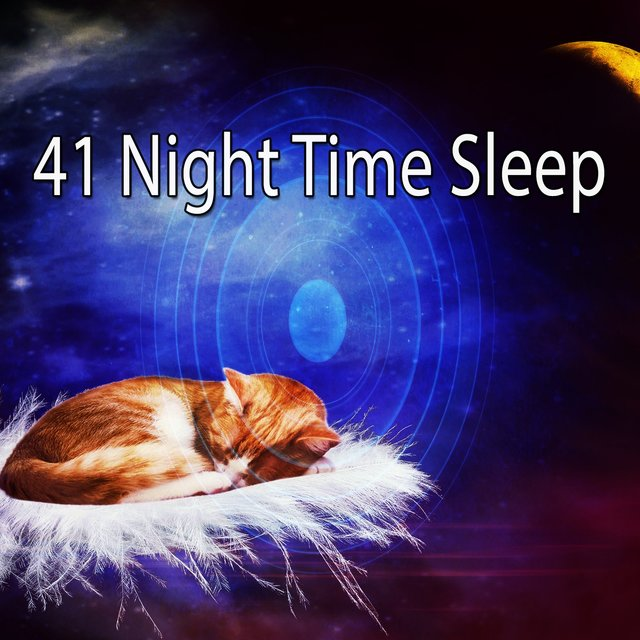 41 Night Time Sle - EP
