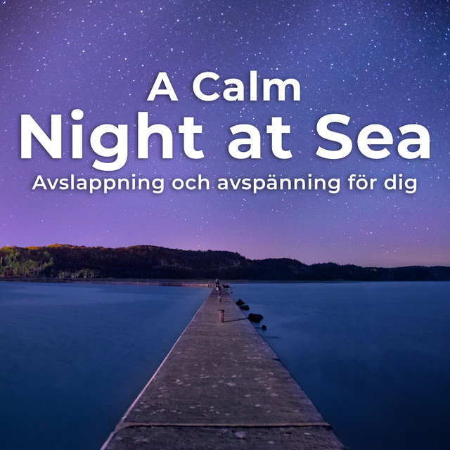 A Calm Night at Sea