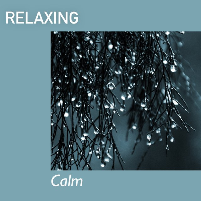 # 1 Album: Relaxing Calm