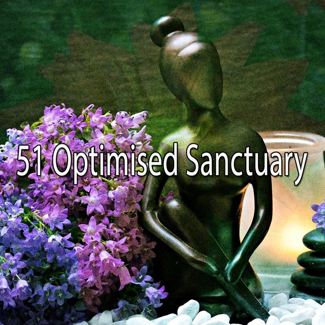 51 Optimised Sanctuary