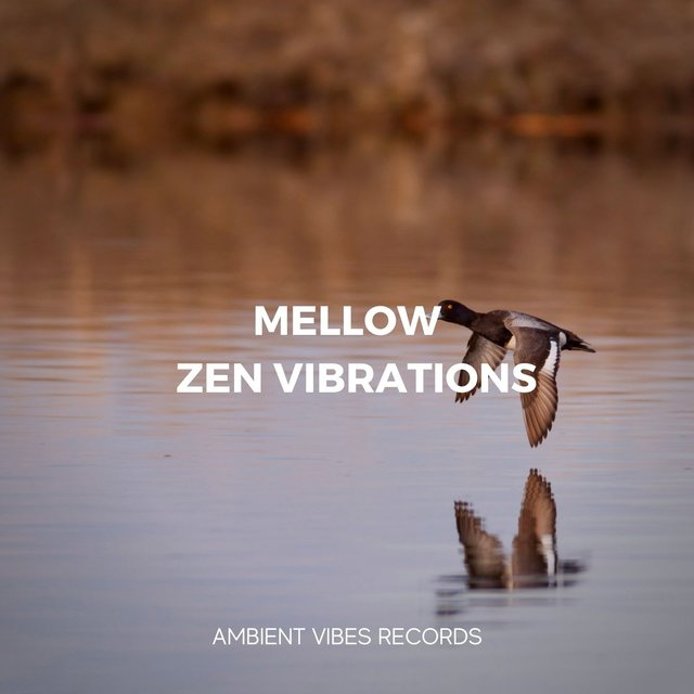 Mellow Zen Vibrations