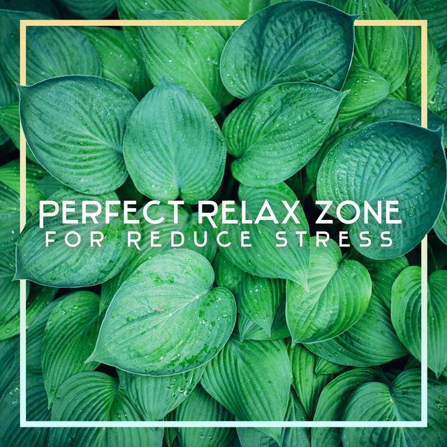 Perfect Relax Zone for Reduce Stress - Rest & Relax, Body, Mind & Soul, Deep Relaxation Music Therapy, Keys of Relaxation