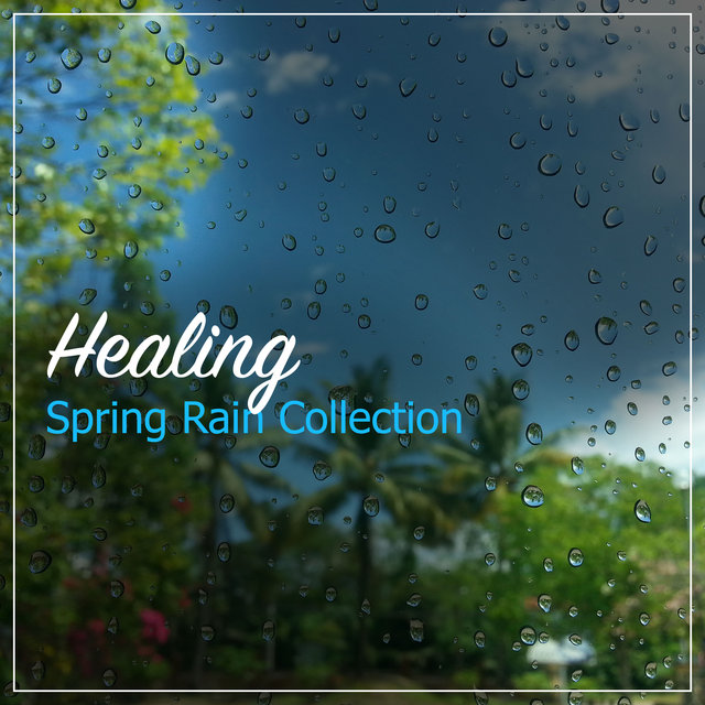 #19 Healing Spring Rain Collection