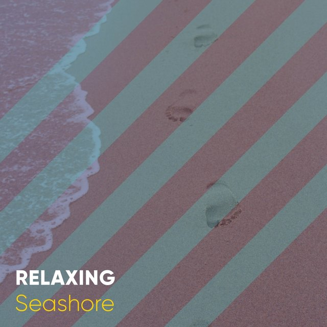 Relaxing Seashore Soundscapes