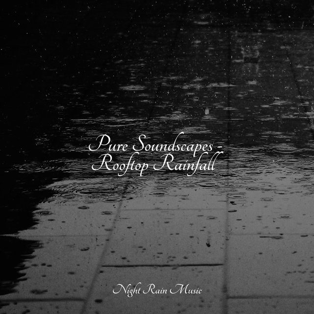 Pure Soundscapes - Rooftop Rainfall