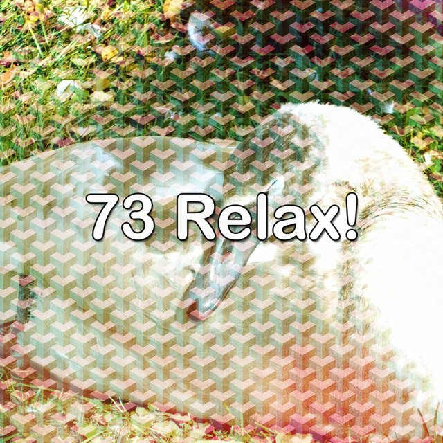 73 Relax!