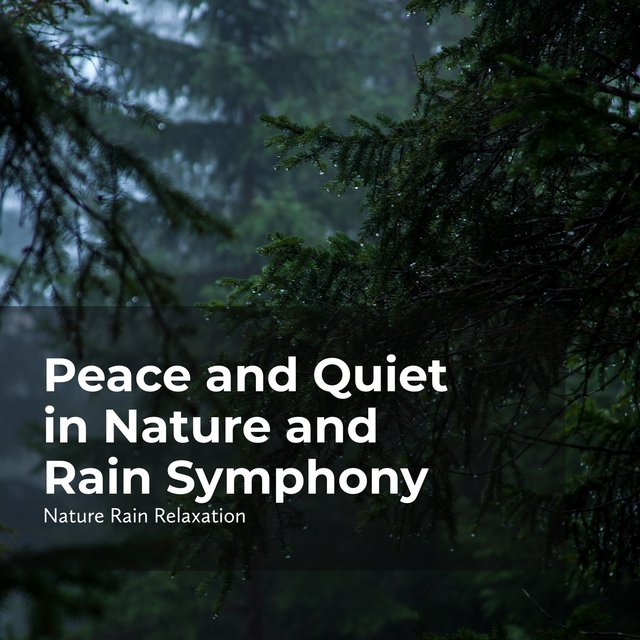 Peace and Quiet in Nature and Rain Symphony