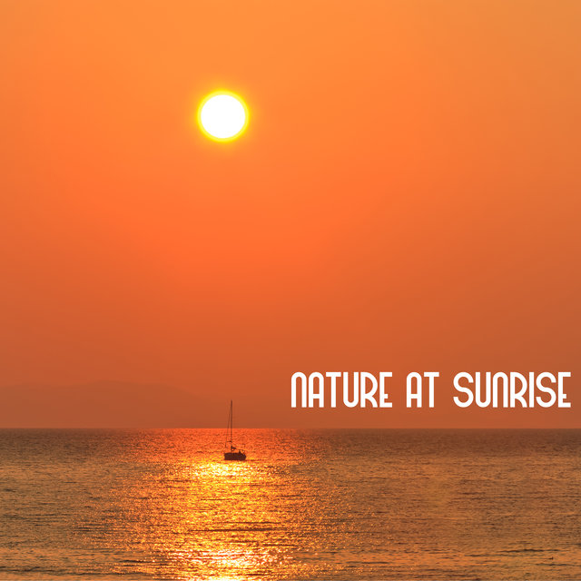 Nature At Sunrise: Relaxing Sounds, Beginning of The Day, Morning Chill, Healing Music