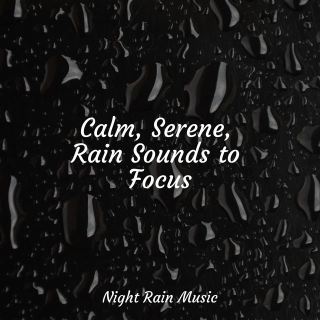 Calm, Serene, Rain Sounds to Focus