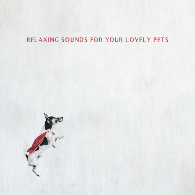 Relaxing Sounds for Your Lovely Pets
