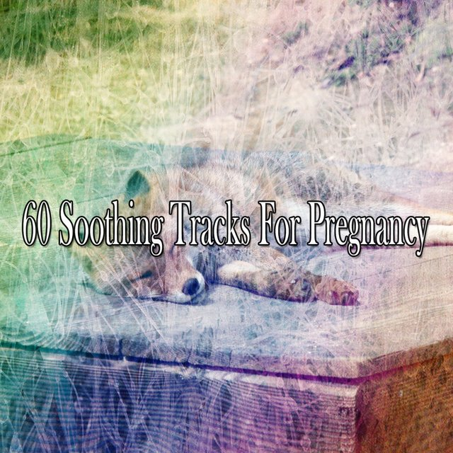 60 Soothing Tracks for Pregnancy
