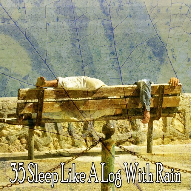 35 Sleep Like a Log with Rain