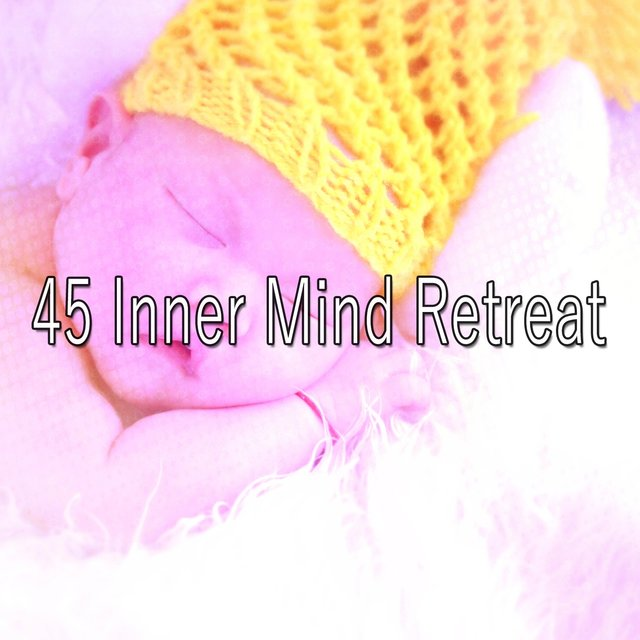45 Inner Mind Retreat