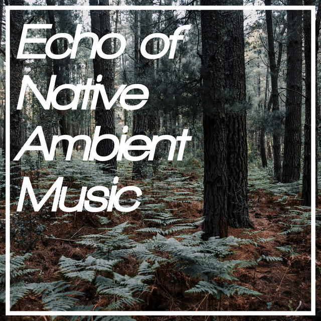 Echo of Native Ambient Music