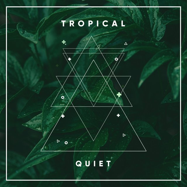 # 1 Album: Tropical Quiet