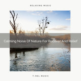 New Noises Of Nature For Chill Out And Noise Therapy
