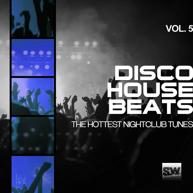 Disco House Beats, Vol. 5 (The Hottest Nightclub Tunes)