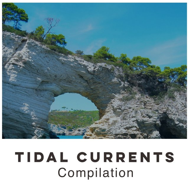 2020 Relaxing Tidal Currents Compilation