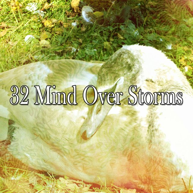 32 Mind over Storms
