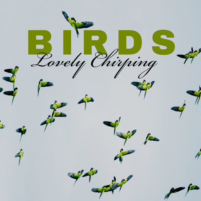 Birds Lovely Chirping