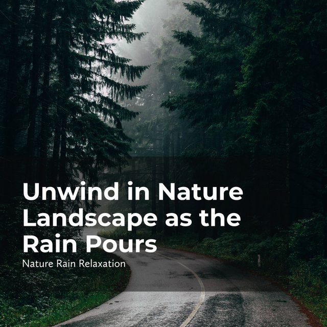 Unwind in Nature Landscape as the Rain Pours