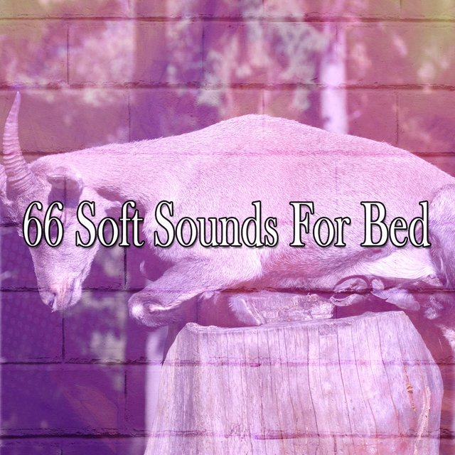 66 Soft Sounds For Bed