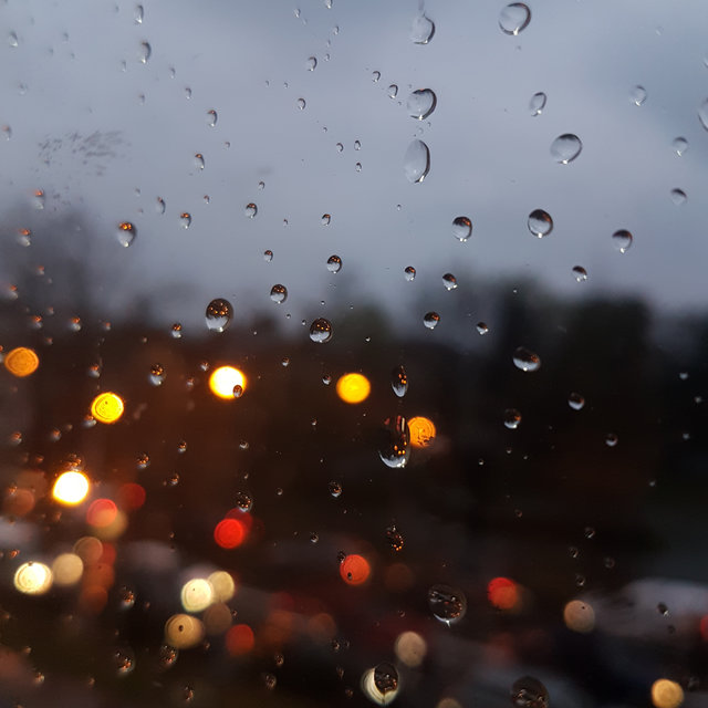 40 Calming Rain Sounds for Sleep and Serenity