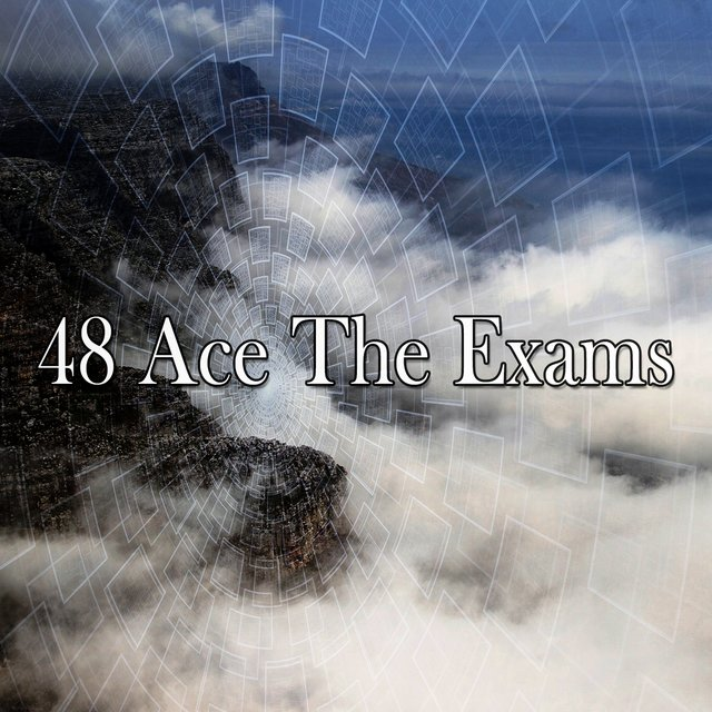 48 Ace the Exams