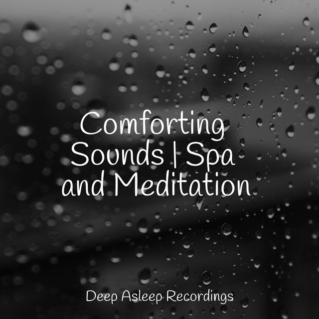 Comforting Sounds | Spa and Meditation