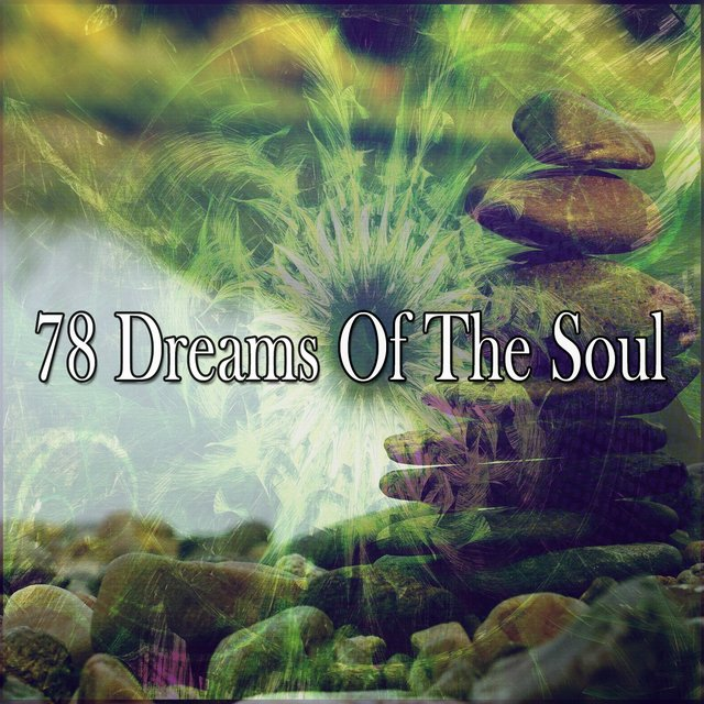 78 Dreams of the Soul
