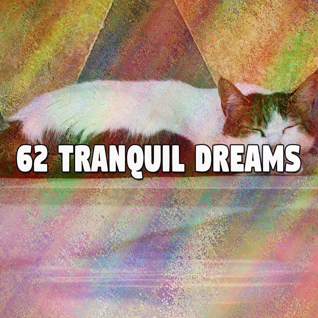 62 Tranquil Dreams