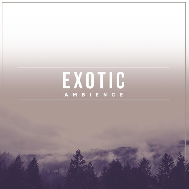 # Exotic Ambience