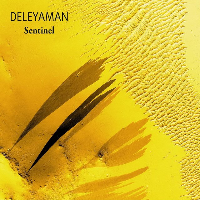 Cover art for album Sentinel by Deleyaman