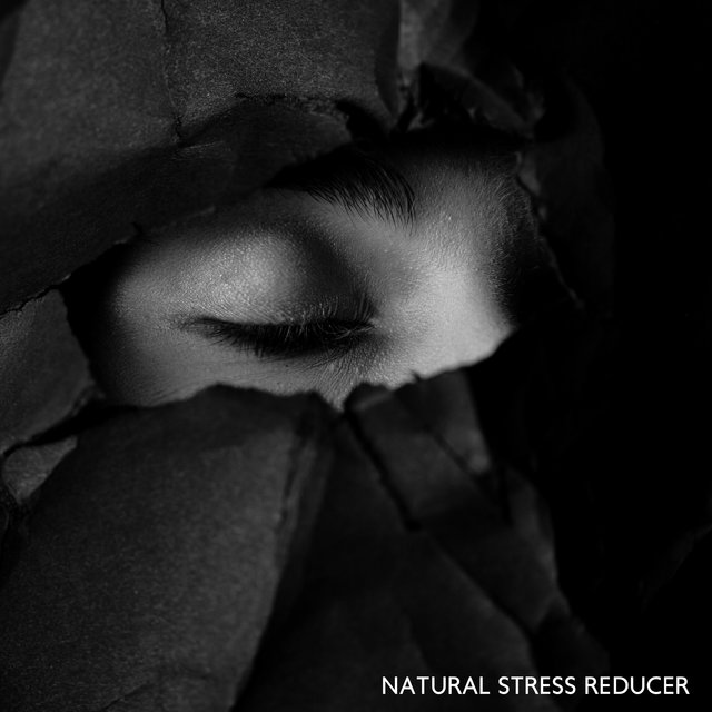 Natural Stress Reducer - Soothing Sounds Collection That Will Soothe Your Nerves and Help You Recapture Your Body and Mind