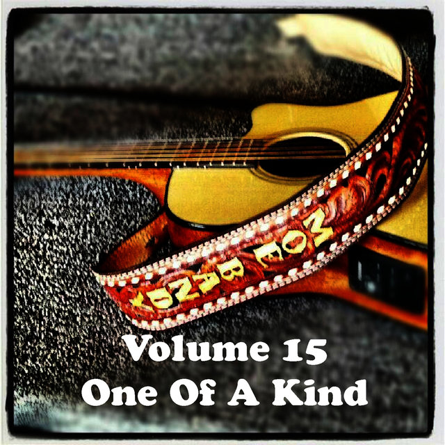 Volume 15 - One Of A Kind