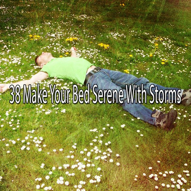 38 Make Your Bed Serene with Storms